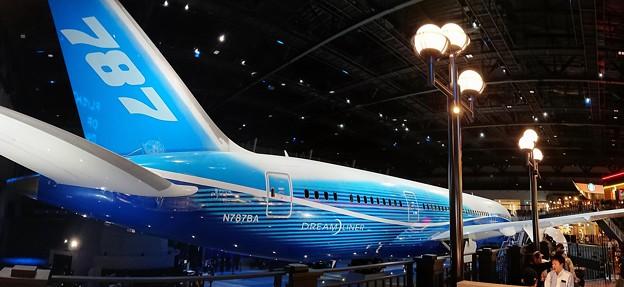"""FLIGHT OF DREAMS""""BOEING787"""" No.2"""