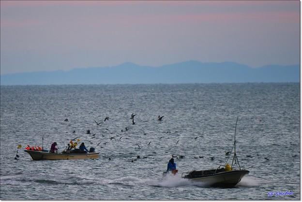 Photos: 早朝の漁
