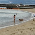 Photos: 静かな海水浴場