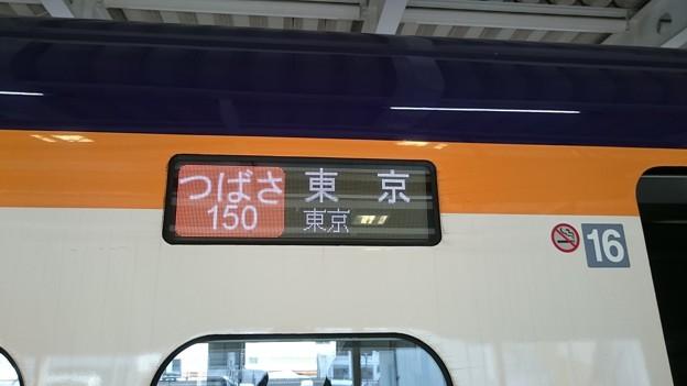 写真: 行先表示器 (E3系 仙カタL71編成) [JR 新庄駅]