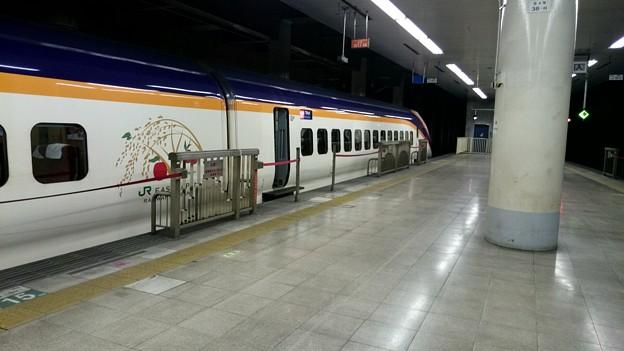 E3系 仙カタL71編成 [JR 上野駅]