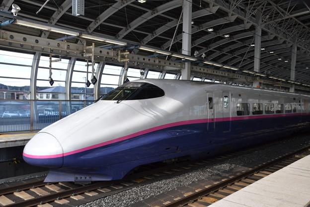 E2系 仙セシJ67編成 [JR 八戸駅]