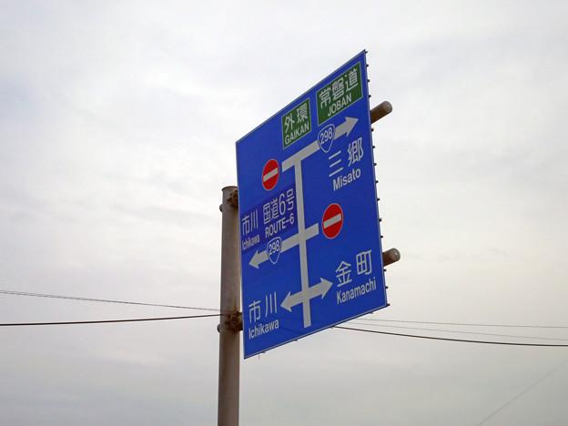 Photos: 標識(青看) [松戸市道]