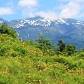 Photos: 白山を望む