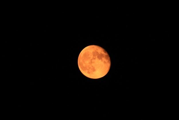 Photos: オレンジムーン