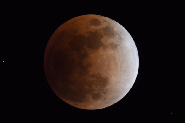 同じ月を観ている