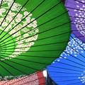 写真: 傘を見上げて