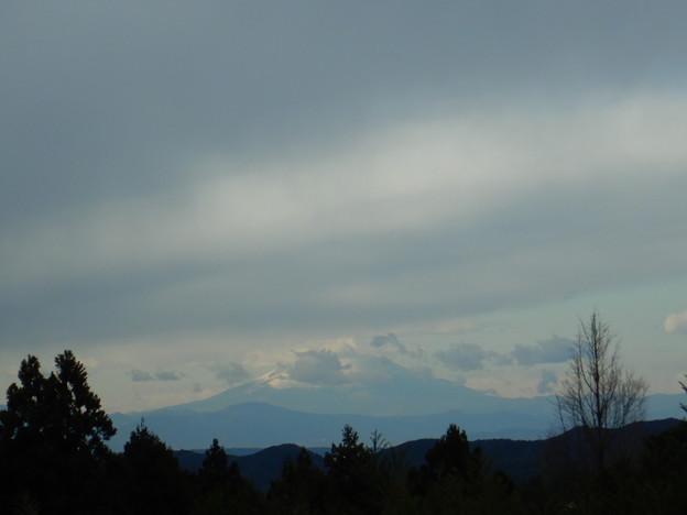 富士山も見えた。