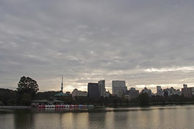 曇りの朝883c