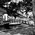 写真: 運河