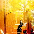 写真: 黄金に染まる
