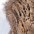 写真: 華厳の滝の岩壁