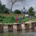 写真: 乾季だけの竹橋