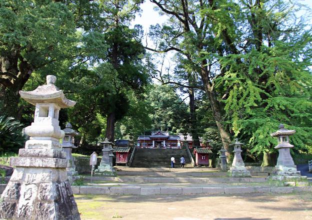 Photos: 大楠神社