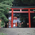 Photos: 霧島神宮 鳥居