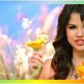 Beautiful Selena Gomez(9005659)