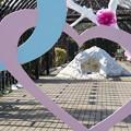 冬の横浜イングリッシュガーデン