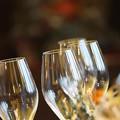Photos: ワイングラス