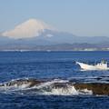 写真: 江ノ島からの富士