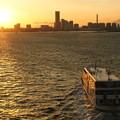 写真: 横浜港内観光船
