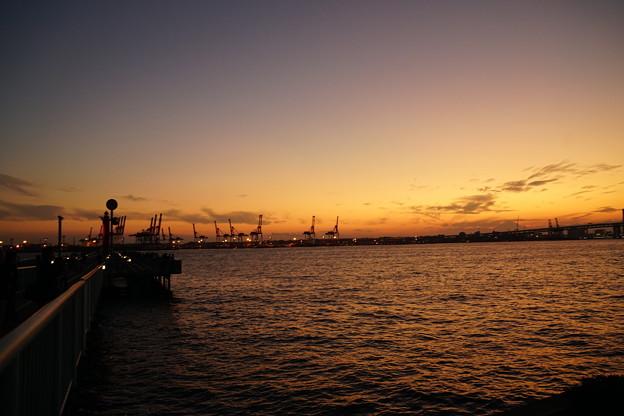 写真: 海釣り公園