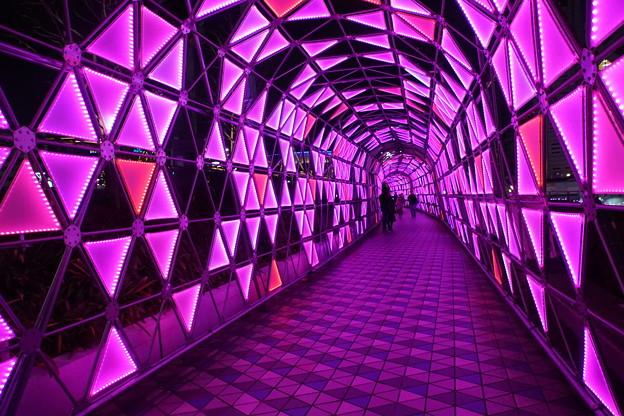 ピンクのトンネル