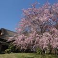 写真: 鶴翔閣