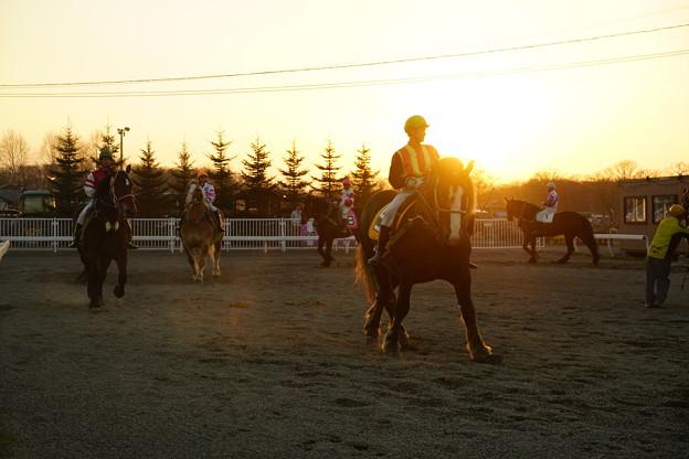 夕日の騎手