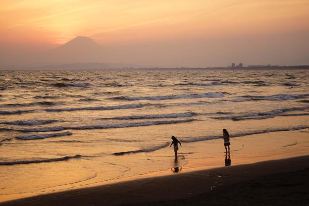 写真: 湘南海岸