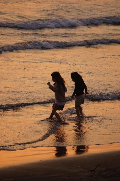 海に入る子供