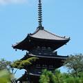 写真: 夏の三重塔