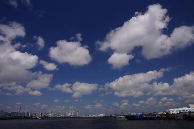 青い空と白い雲