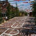 Photos: 夏の赤レンガ倉庫