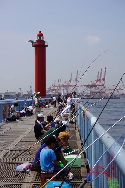 写真: 大黒海釣り公園