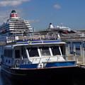 Photos: 横浜港内観光船
