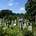 写真: 外人墓地