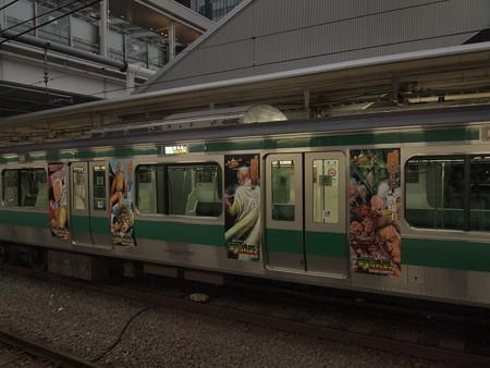 E233系普通   埼京線大崎駅02