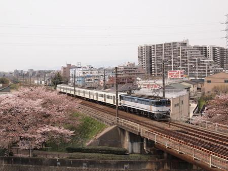 EF65 西武新101系甲種 中央本線日野~立川01