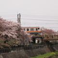 E233系 中央本線日野~立川06