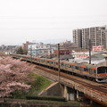 205系 むさしの号 中央本線日野~立川