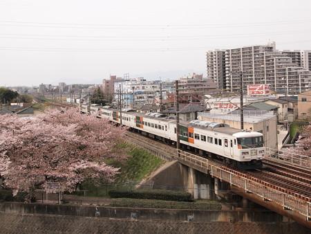 185系団臨 中央本線日野~立川