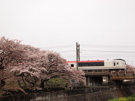 E259系成田エクスプレス 中央本線日野~立川