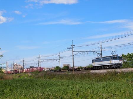 EF65貨物   武蔵野線東浦和~東川口01