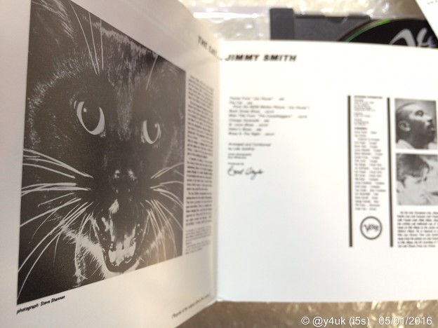 The Cat ~オルガンでジャズってCool♪