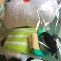 写真: 楽天買取おパンは緑ボーダーシャツにキャンパストートで今の季節、春の装い♪やっぱトート欲しいo(>_<)o一緒にカメラ入れてさ♪