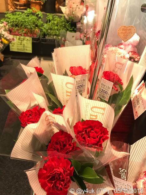 17:24通院帰りフラフラ中に購入カーネーション~何年ぶりか?自分の心の花が優しさが買ったが…~Red flower of carnation