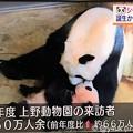 18:24まだピンクのシャンシャンを可愛がるお母さんシンシン♪NHK首都圏ネットワーク「上野動物園の来訪者450万人余」会いたい☆子は親を選べない。子に罪はない。無償の愛( ´ ▽ ` )羨ましい愛情