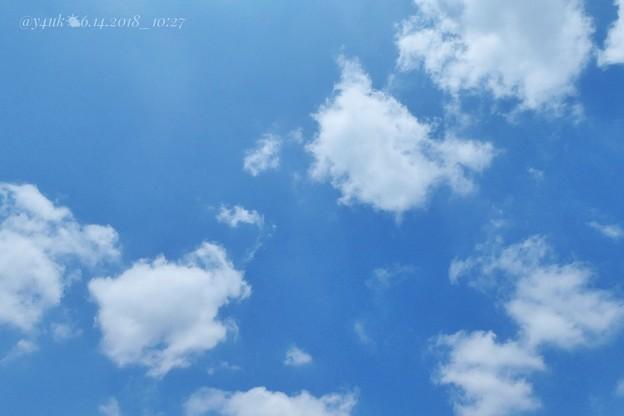 10:27am only…梅雨の晴れ間( ´ ▽ ` )躍動し本能で慌てて取りに戻って撮影!青空+雲=サイコー!爽やかでもpm曇り夜は北風…雨…つかの間の貴重な晴れ間、小さな幸せblue sky飛ぶ