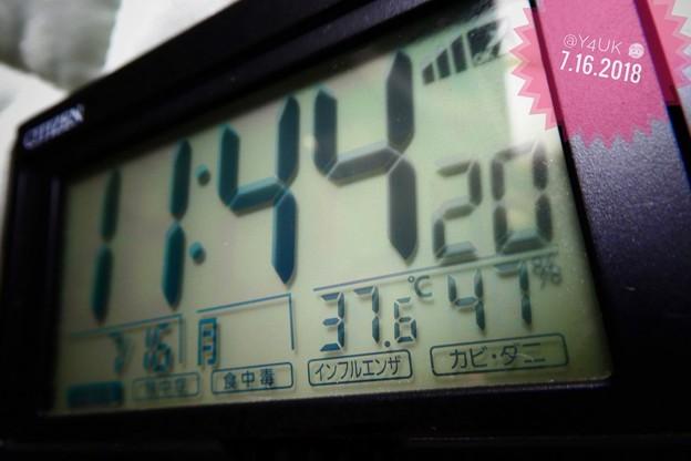 11:44am 37.6℃47%~午前中からHotday猛暑酷暑滴る汗の中命がけ撮影pmさらにアップ命の危険な連日連夜
