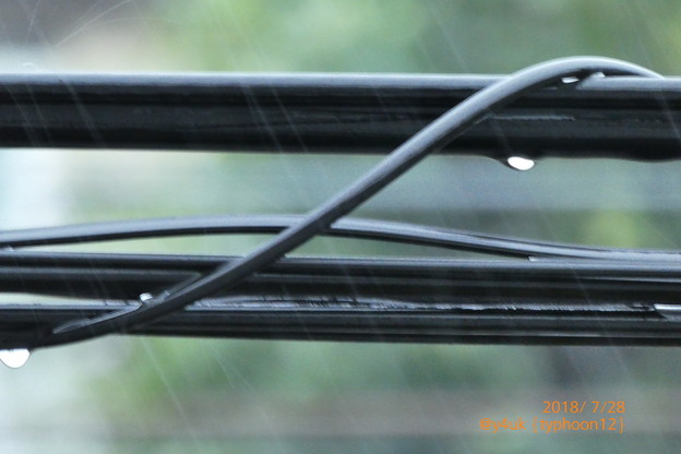 Photos: typhoon12 RainDrop black cable back summer~真夏の台風暴風雨、酷暑クールダウン若干。そして1週また今日13号coming関東(ズーム・絞り優先・撮って出し)
